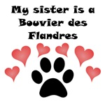 My Sister Is A Bouvier des Flandres