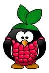 Raspberry Penguin