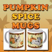 Pumpkin Spice Mugs!