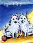 AMERICAN ESKIMO DOG ART