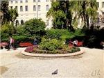 Venetian Park, Photo / Digital Painting