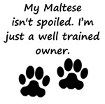 Well Trained Maltese Owner