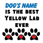 Best Yellow Lab Ever