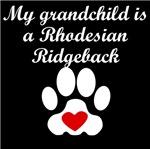 Rhodesian Ridgeback Grandchild