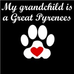 Great Pyrenees Grandchild