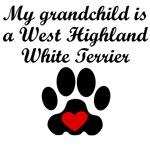 West Highland White Terrier Grandchild