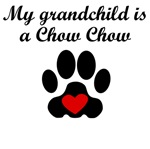 Chow Chow Grandchild