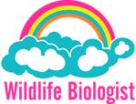 Wildlife Biologist Rainbow Cloud