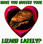 Lizard Lover's products