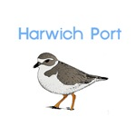 Harwich Port T-Shirts