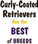 Curly-Coated Retriever Best of Breeds Gifts Items