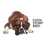 Cool Story Boxer
