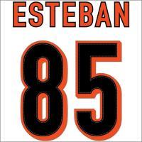 Esteban Vapor Jersey