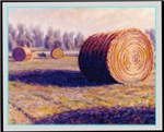 HAY BALES & COTTON