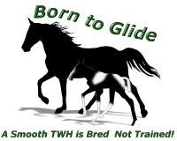 TWH Born to Glide sFoal