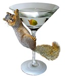 Martini Squirrel