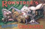 Chocolate, Cats