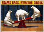 Circus, Polar Bears, Vintage Poster