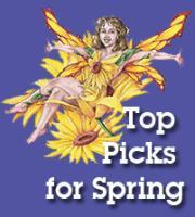 Top Picks for Spring!
