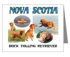 Toller Note Cards