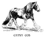 Gypsy Horse/Coloured Irish Cob