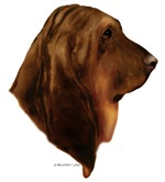 Liver & Tan Bloodhound items with this design