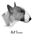 Coloured Bull Terrier items with this design