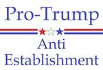 Anti Establishment