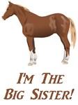 I'm the big sister horse