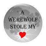 A Werewolf stole my heart