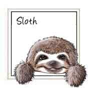 Pocket Sloth