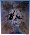 Killer Whale, wildlife art