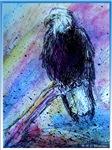 Eagle, bird, wildlife art!