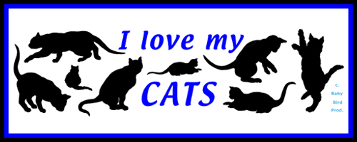 CAT T-SHIRTS & CLOTHING