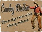 Vintage Cowboy- Wisdom