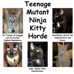 Teenage Mutant Ninja Kitty Horde