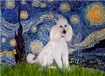 STARRY NIGHT<br>& White Standard Poodle #9