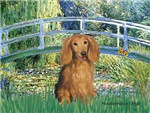 LILY POND BRIDGE<br>& Sable long haired Dachshund