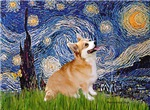 STARRY NIGHT<br>& Pembroke Welsh Corgi