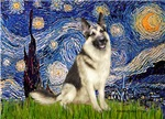 STARRY NIGHT<br>& German Shepherd