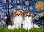 STARRY NIGHT<br>With 2 Papillons