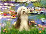 WATER LILIES<br>& Bearded Collie (brown)