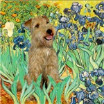IRISES<br> & Lakeland Terrier