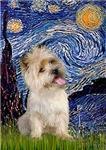 STARRY NIGHT<br>& Wheaten Cairn Terrier