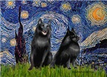 STARRY NIGHT<br>Wtih Schipperkees 5 & 6