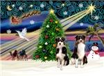 CHRISTMAS MAGIC<br>& 2 Australian Shepherds