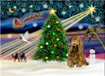 CHRISTMAS MAGIC<br>& Cocker Spaniel