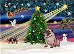 CHRISTMAS MAGIC<br>& Pug
