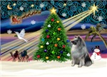CHRISTMAS MAGIC<br>& Keeshond
