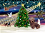 CHRISTMAS MAGIC<br>& Dachshund